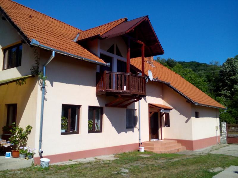 Vand casa 6 camere in Savarsin