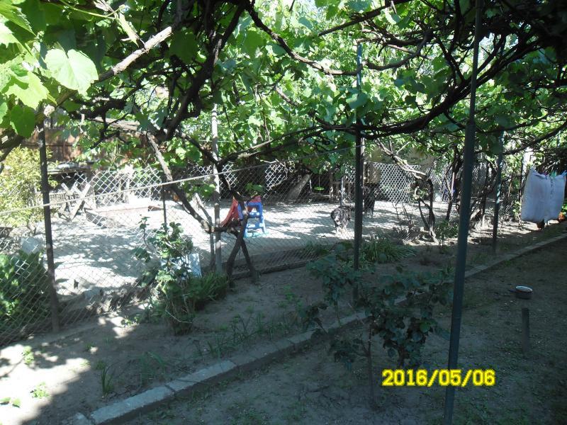 Vand teren zona Boul Rosu